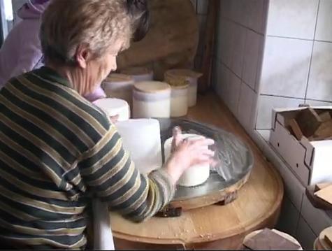Planinska paša in predelava mleka