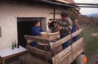 Foto: Andrej Dular, 1992.