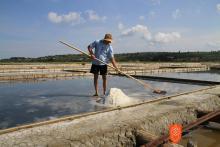 Soline pridelava soli, d. o. o. Foto: Iztok Škornik, 2011.