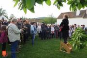 Nagovor direktorice Oddelka za nesnovno kulturno dediščino Eszter Csonka-Takacs na odprtju Binkoštnega festivala. Foto: Anja Jerin, 2016.